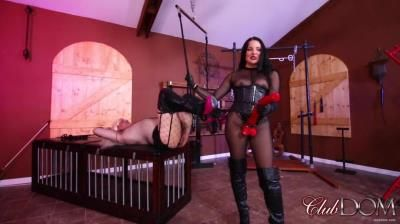 Clubdom: Mistress Michelle Has Lots Of Horse-Power