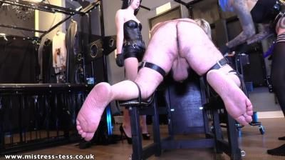 Mistress Tess Uk Clip Store: Mistress Tess, Mistress Karina, Mistress Bliss - 3 Way Peg