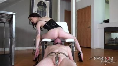 Vicious Femdom Empire: Evelyn Claire - A Queens Throne