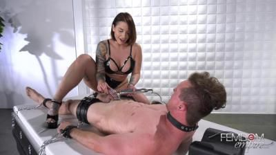 Vicious Femdom Empire: Mistress Ivy - Caged Desires