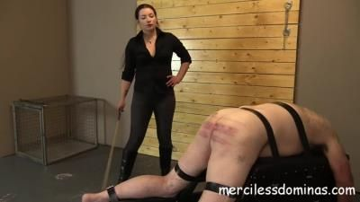 Merciless Dominas: Goddess Sophia - Caned For His Crimes