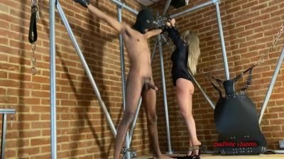 Sadistic Queens: Miss Courtney - Bounded And Brutallybusted
