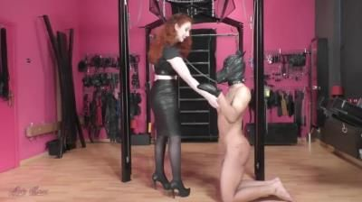 Mistress Lady Renee: The New Puppy