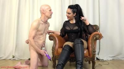 Mistress Ezada Sinn: A Regular Day In My Chattel Sits Life
