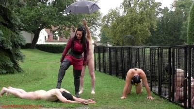 Mistress Ezada Sinn: Brutal Whipping On A Cold Rainy Day