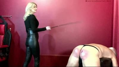 Clips4sale: Domina Scarlet - 160 Stroke Thrashing