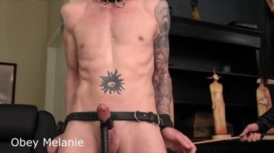Clips4sale: Obey Melanie - Who Trains Your Dick