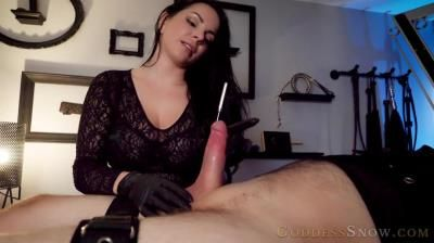Clips4sale: Goddess Alexandra Snow - Sounding And Pumping