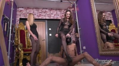 Clips4sale: Goddess Gynarchy - Manhood Annihilation