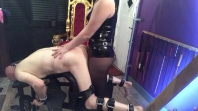Clips4sale: Goddess Gynarchy - Slave Getting Pegged