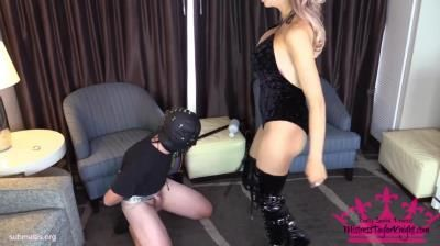Clips4sale: Mistress Taylor Knights Empire - Painful Consequences For His Balls