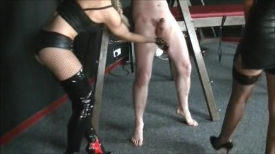 Clips4sale: Severe Ball Busting